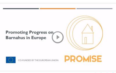 PROMISE 1 – the Webinar