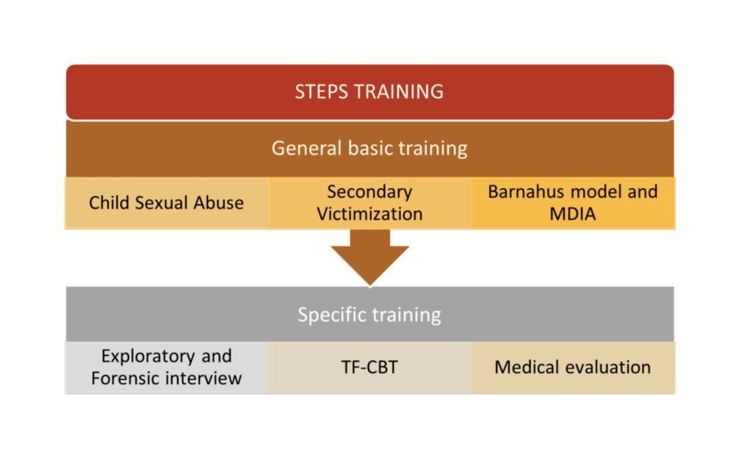 Spain takes STEPS in establishing a national training programme for Barnahus